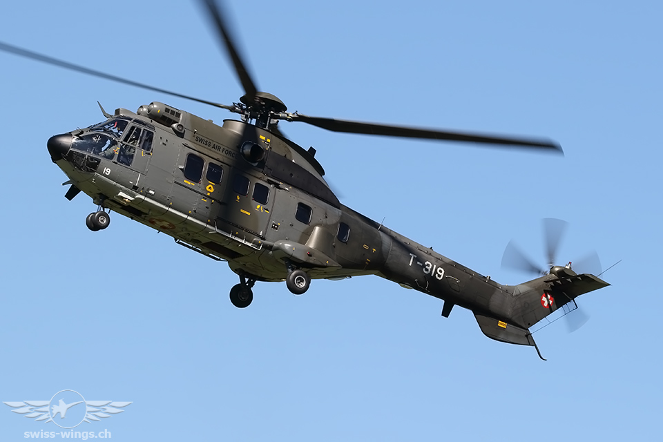 Super Puma Display Team